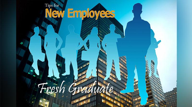 5 Tips Sukses Fresh Graduate Memasuki Dunia Kerja