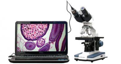 Selamat Hari Patologi Internasional, 11 November 2020